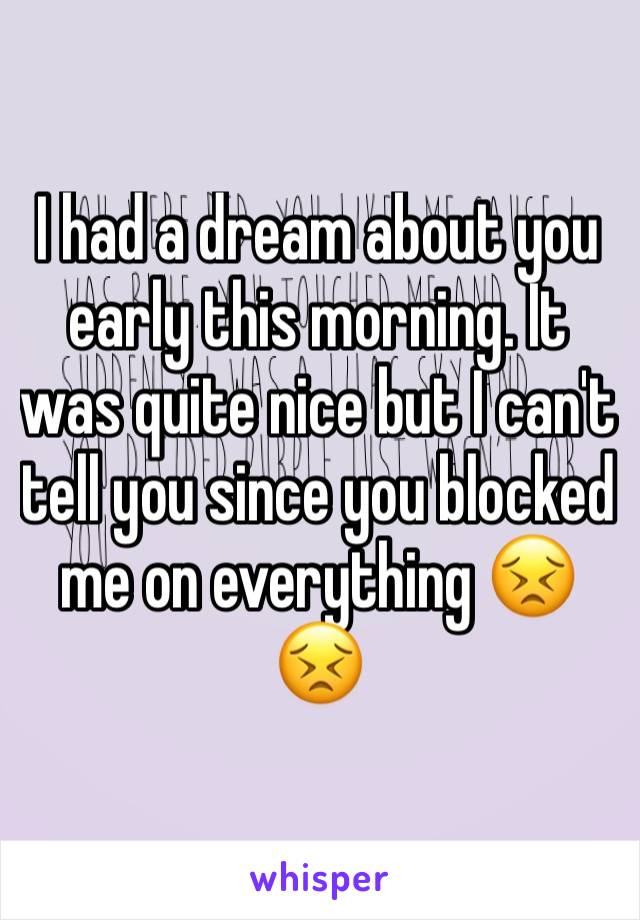 I had a dream about you early this morning. It was quite nice but I can't tell you since you blocked me on everything 😣😣