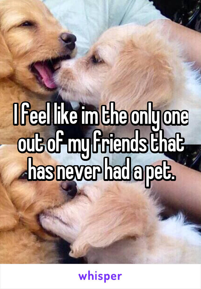 I feel like im the only one out of my friends that has never had a pet.