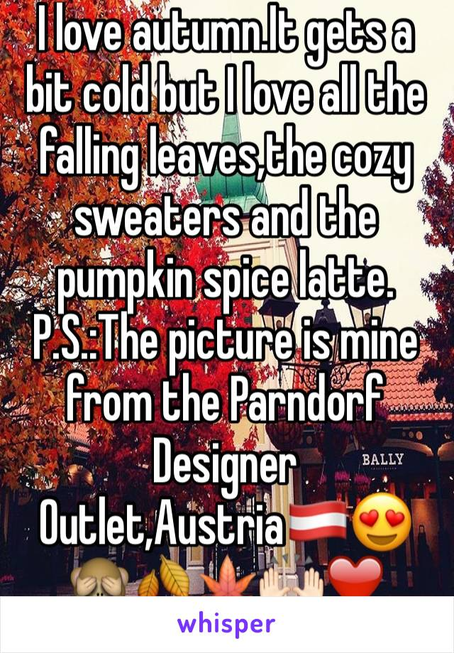 I love autumn.It gets a bit cold but I love all the falling leaves,the cozy sweaters and the pumpkin spice latte. P.S.:The picture is mine from the Parndorf Designer Outlet,Austria🇦🇹😍🙈🍂🍁🙌🏻❤️