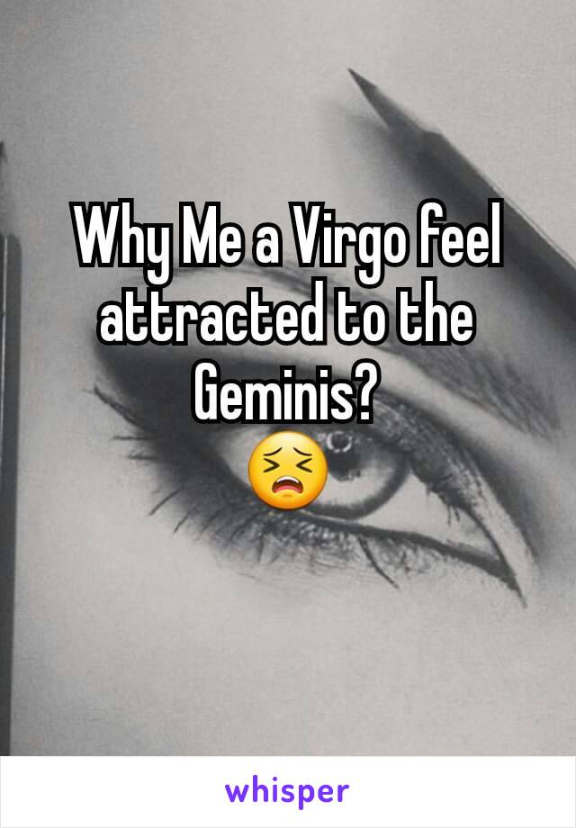 Why Me a Virgo feel attracted to the Geminis? 😣