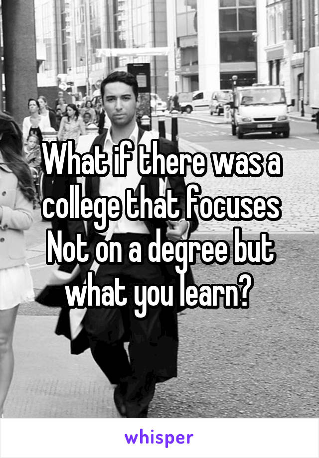 What if there was a college that focuses Not on a degree but what you learn?