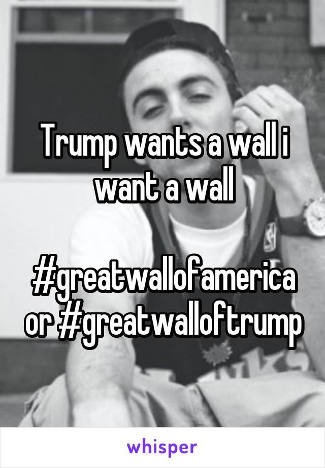 Trump wants a wall i want a wall  #greatwallofamerica or #greatwalloftrump