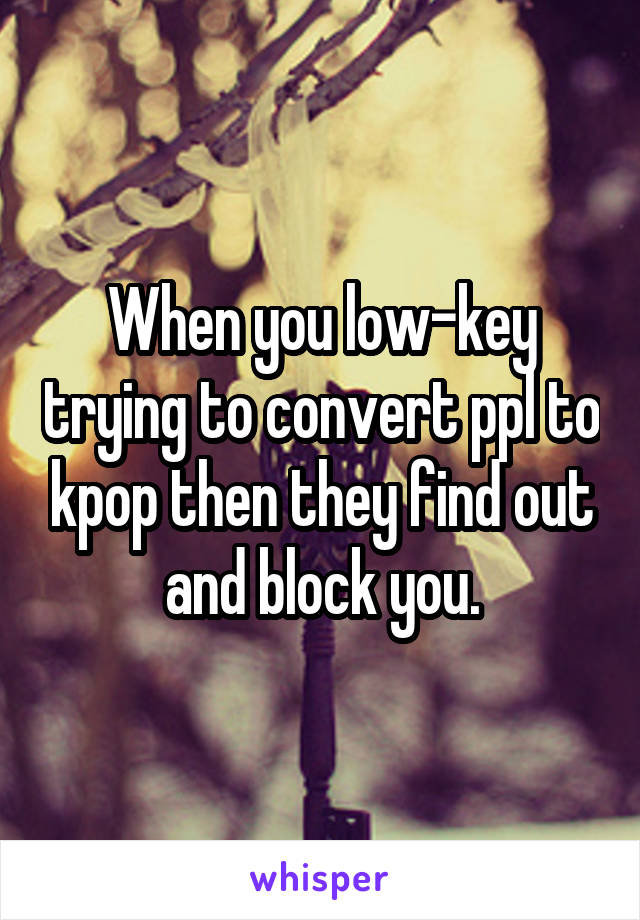 When you low-key trying to convert ppl to kpop then they find out and block you.