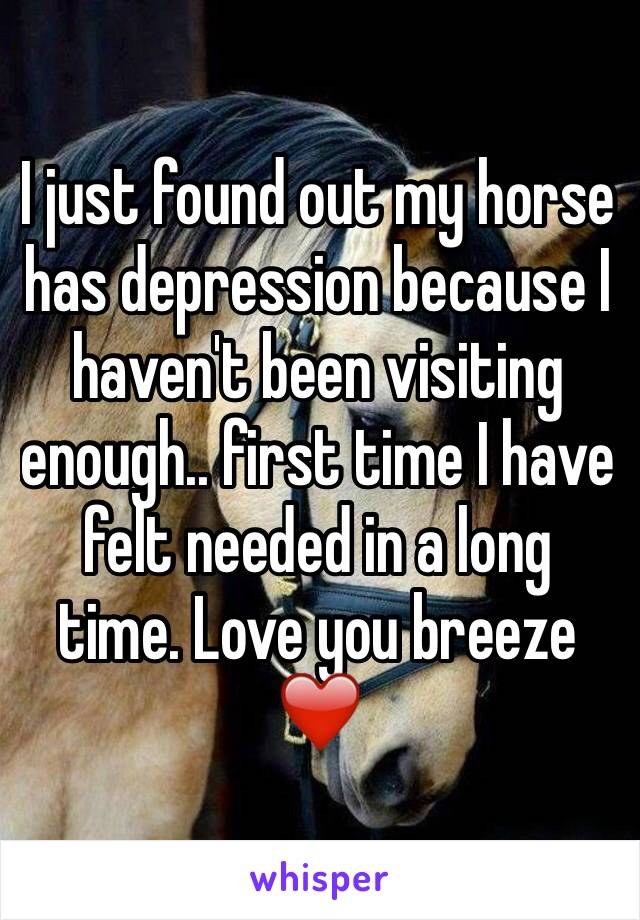 I just found out my horse has depression because I haven't been visiting enough.. first time I have felt needed in a long time. Love you breeze ❤️