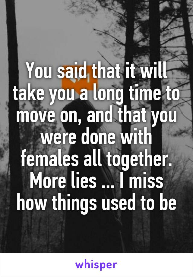 You said that it will take you a long time to move on, and that you were done with females all together. More lies ... I miss how things used to be