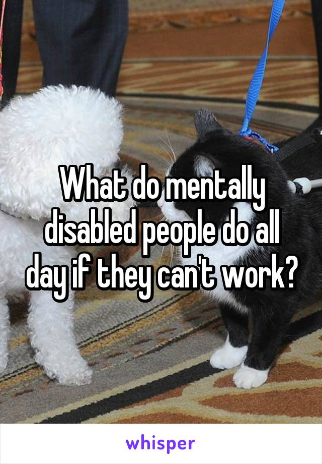 What do mentally disabled people do all day if they can't work?