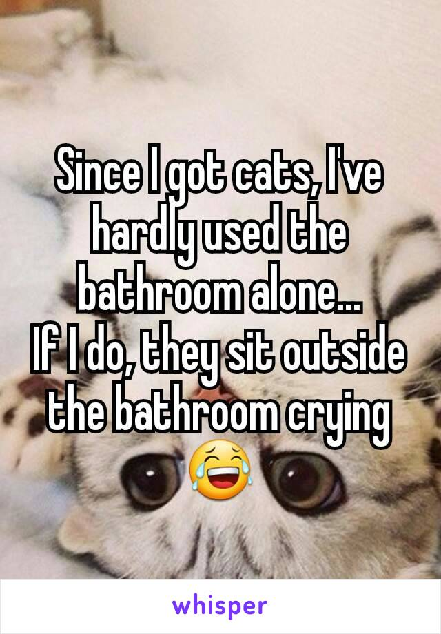Since I got cats, I've hardly used the bathroom alone... If I do, they sit outside the bathroom crying 😂