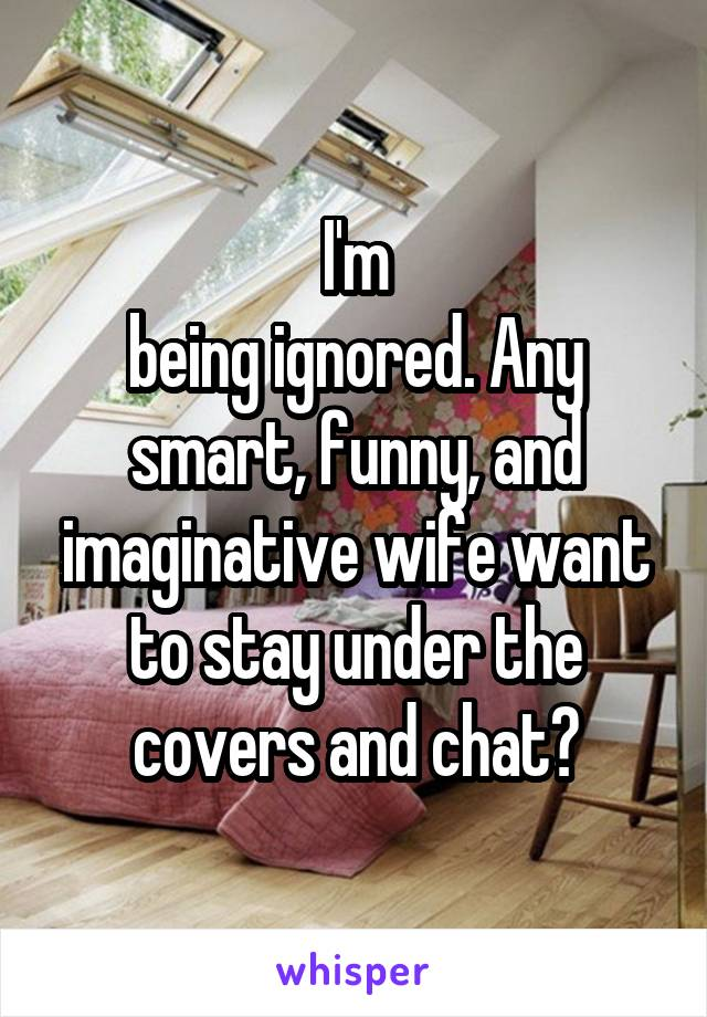 I'm being ignored. Any smart, funny, and imaginative wife want to stay under the covers and chat?