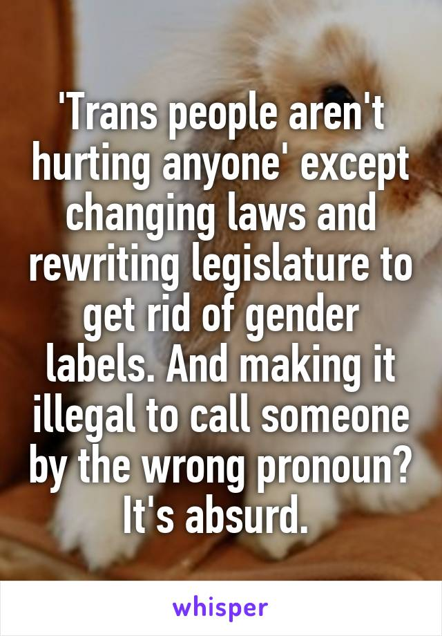 'Trans people aren't hurting anyone' except changing laws and rewriting legislature to get rid of gender labels. And making it illegal to call someone by the wrong pronoun? It's absurd.