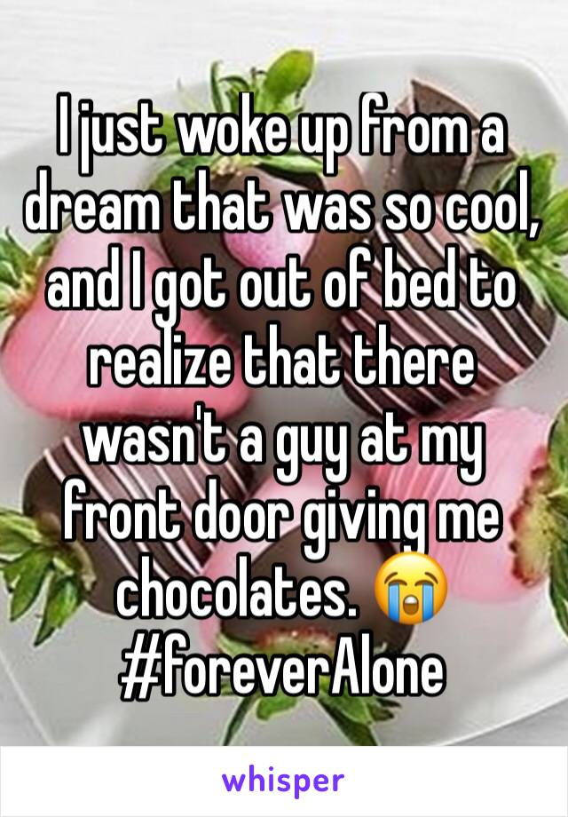 I just woke up from a dream that was so cool, and I got out of bed to realize that there wasn't a guy at my front door giving me chocolates. 😭 #foreverAlone