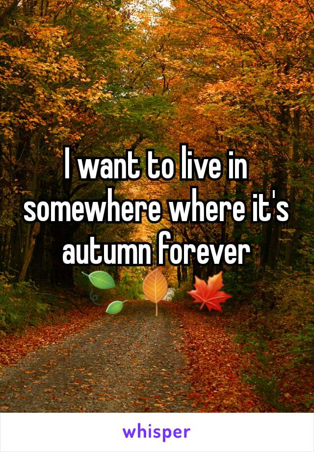 I want to live in somewhere where it's autumn forever 🍃🍂🍁