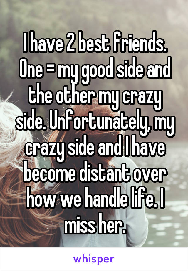 I have 2 best friends. One = my good side and the other my crazy side. Unfortunately, my crazy side and I have become distant over how we handle life. I miss her.