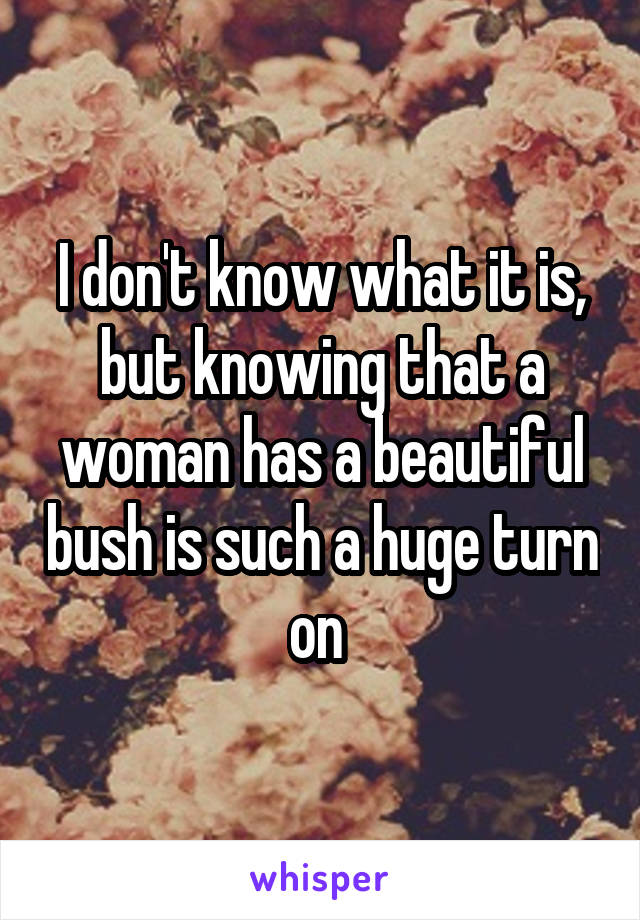 I don't know what it is, but knowing that a woman has a beautiful bush is such a huge turn on