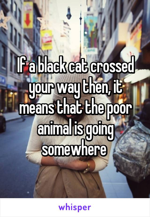 If a black cat crossed your way then, it means that the poor animal is going somewhere
