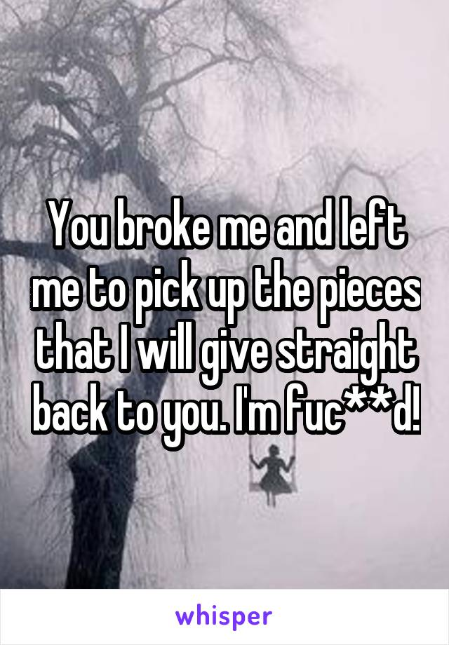 You broke me and left me to pick up the pieces that I will give straight back to you. I'm fuc**d!