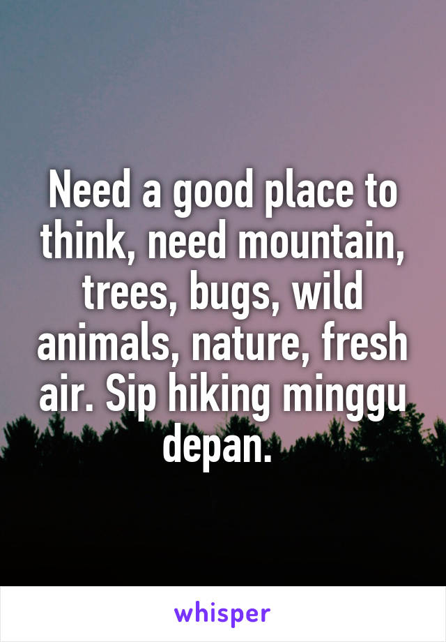 Need a good place to think, need mountain, trees, bugs, wild animals, nature, fresh air. Sip hiking minggu depan.