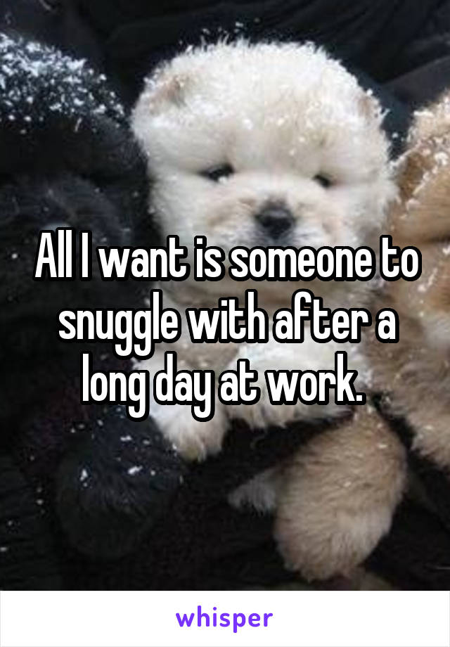 All I want is someone to snuggle with after a long day at work.