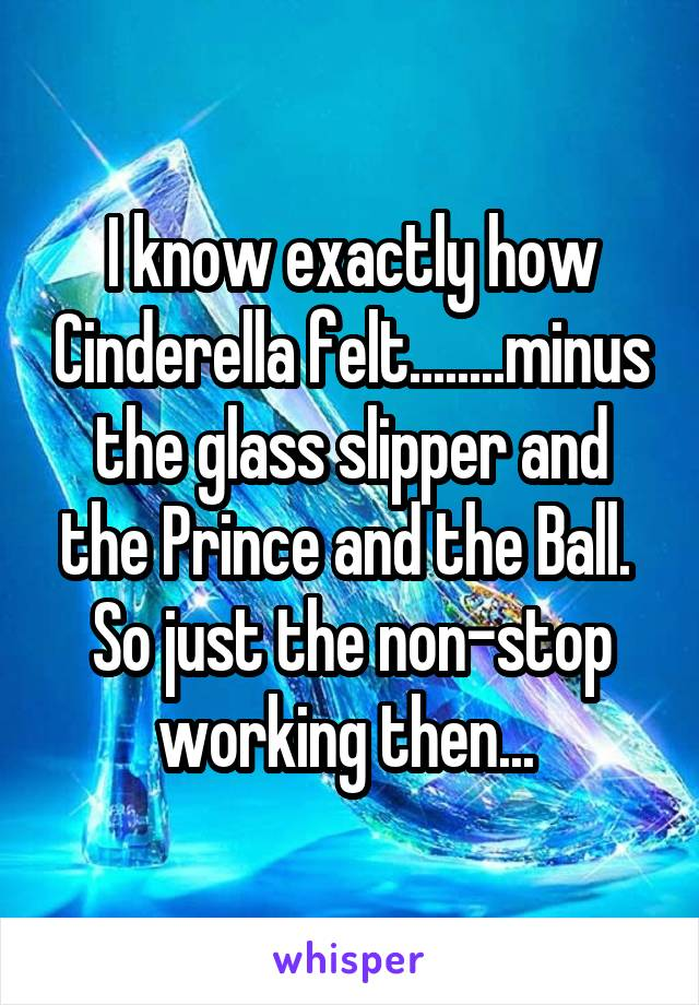 I know exactly how Cinderella felt........minus the glass slipper and the Prince and the Ball.  So just the non-stop working then...