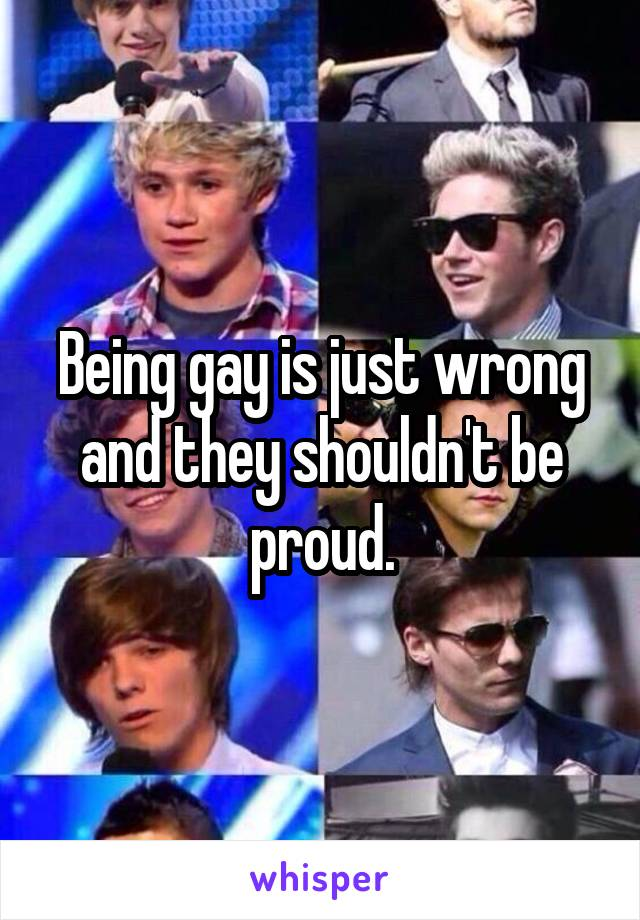 Being gay is just wrong and they shouldn't be proud.
