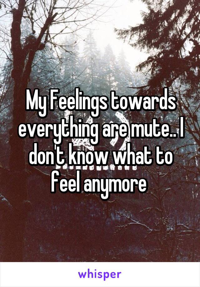 My Feelings towards everything are mute.. I don't know what to feel anymore