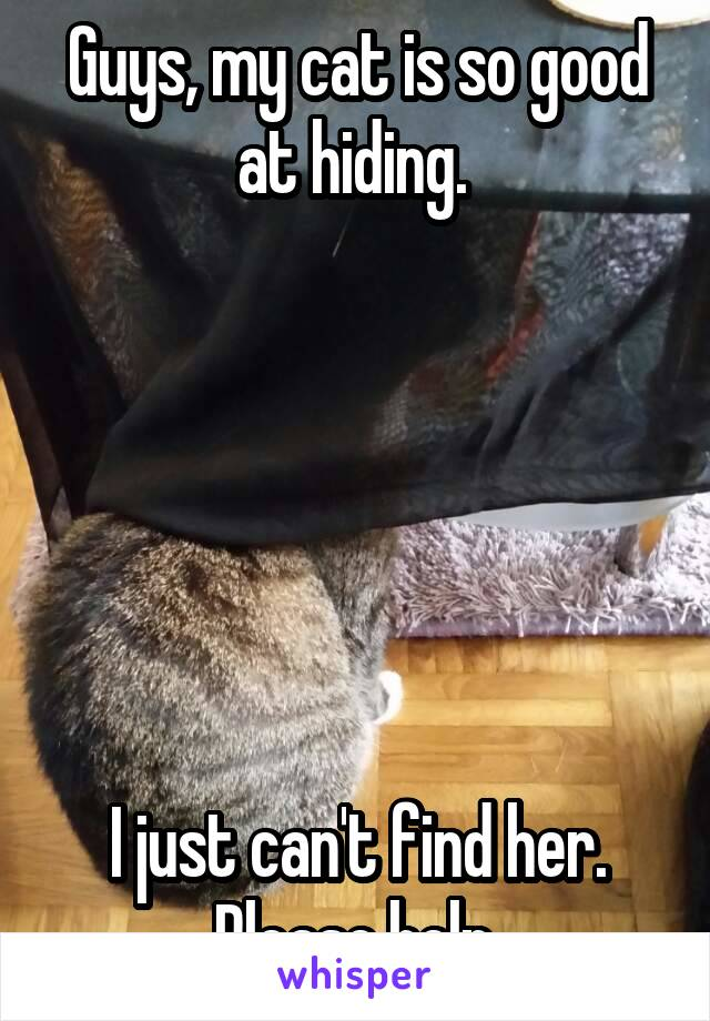 Guys, my cat is so good at hiding.        I just can't find her. Please help.
