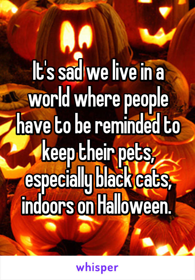 It's sad we live in a world where people have to be reminded to keep their pets, especially black cats, indoors on Halloween.