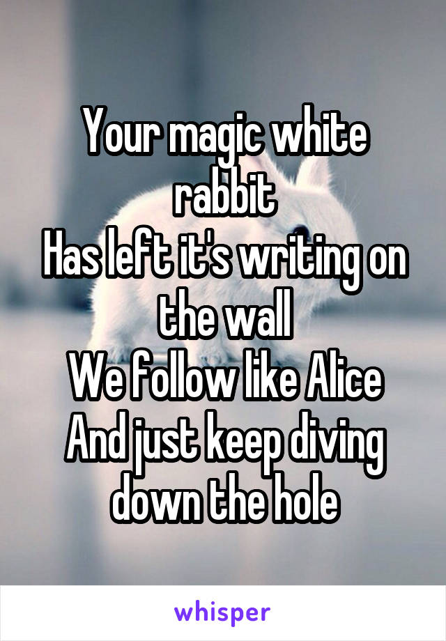 Your magic white rabbit Has left it's writing on the wall We follow like Alice And just keep diving down the hole