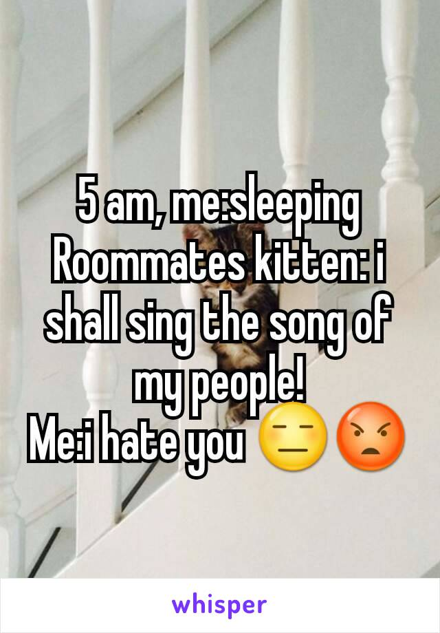 5 am, me:sleeping Roommates kitten: i shall sing the song of my people! Me:i hate you 😑😡