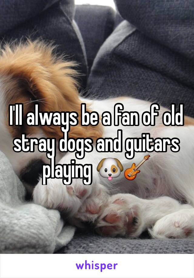I'll always be a fan of old stray dogs and guitars playing 🐶🎸