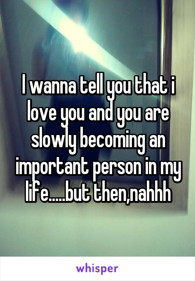 I wanna tell you that i love you and you are slowly becoming an important person in my life.....but then,nahhh