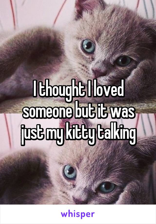 I thought I loved someone but it was just my kitty talking
