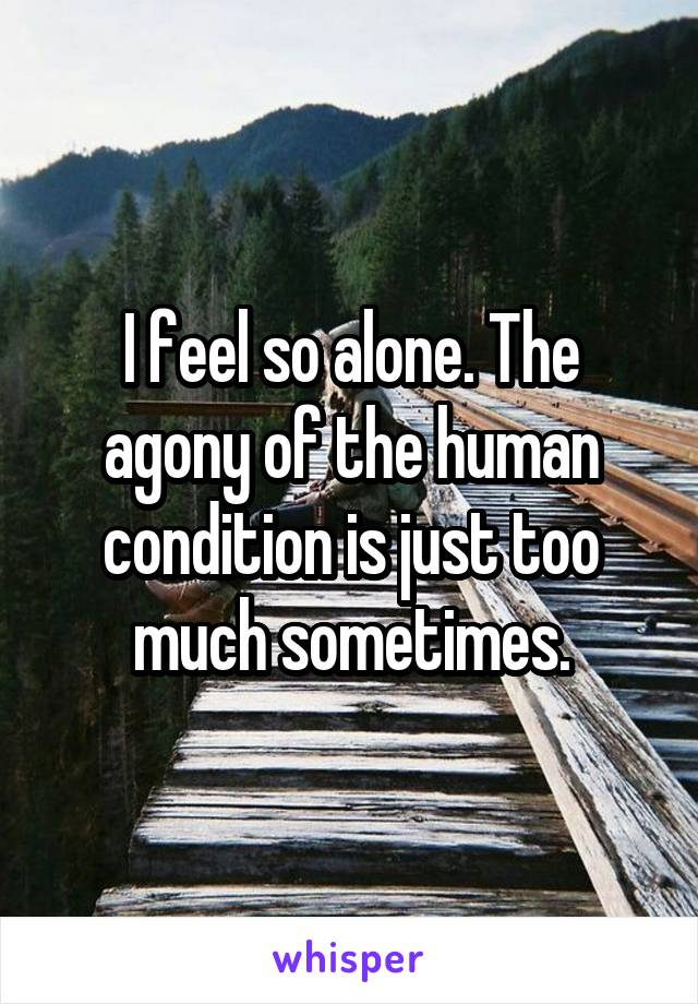 I feel so alone. The agony of the human condition is just too much sometimes.