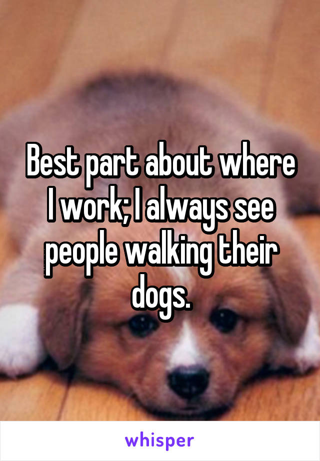 Best part about where I work; I always see people walking their dogs.