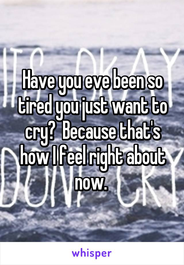 Have you eve been so tired you just want to cry?  Because that's how I feel right about now.