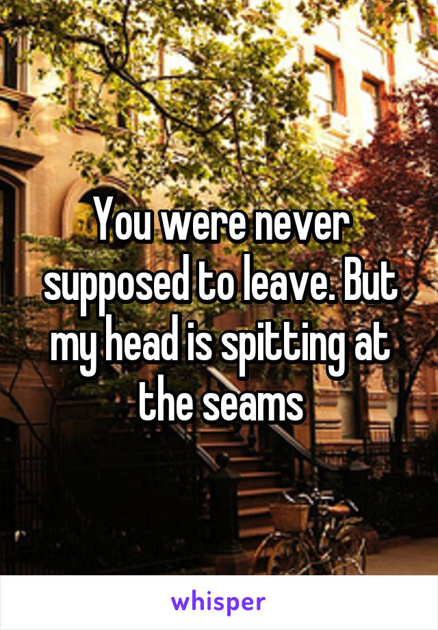 You were never supposed to leave. But my head is spitting at the seams