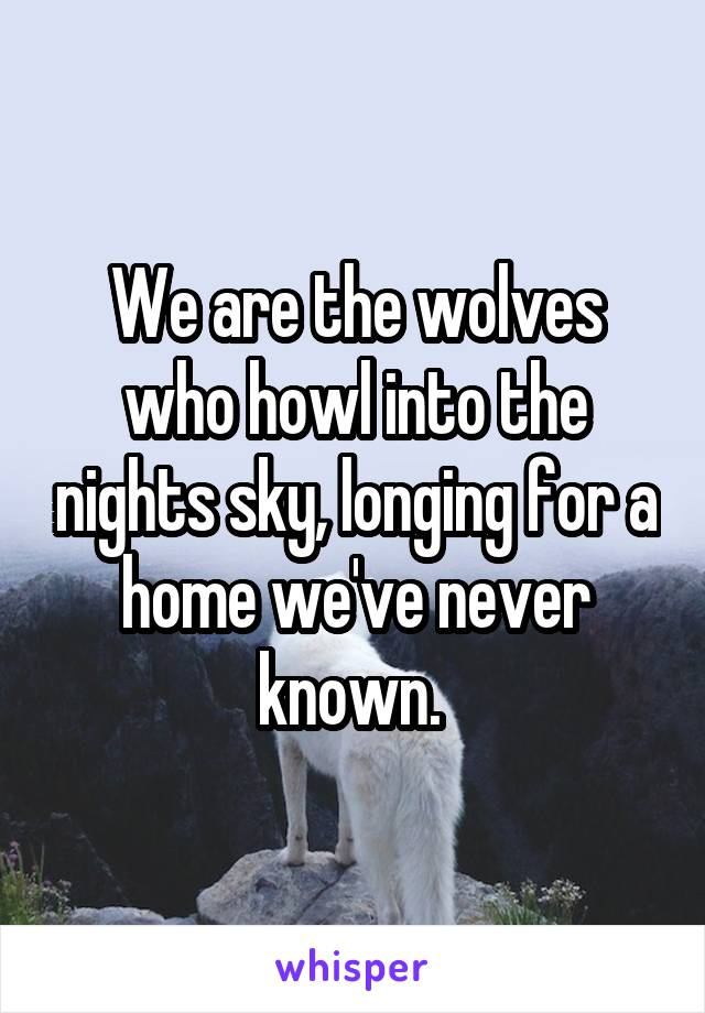 We are the wolves who howl into the nights sky, longing for a home we've never known.