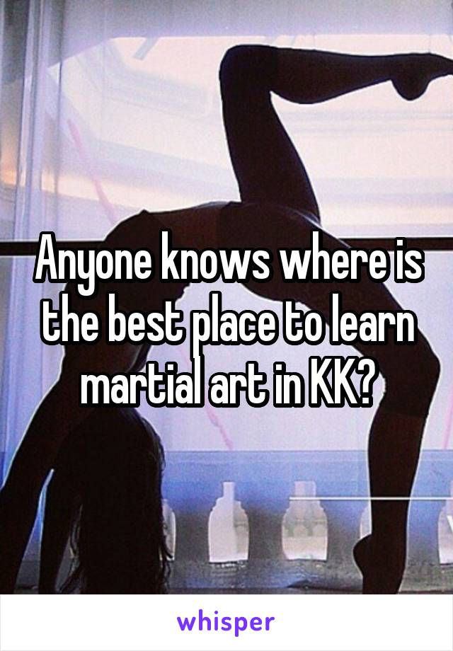 Anyone knows where is the best place to learn martial art in KK?