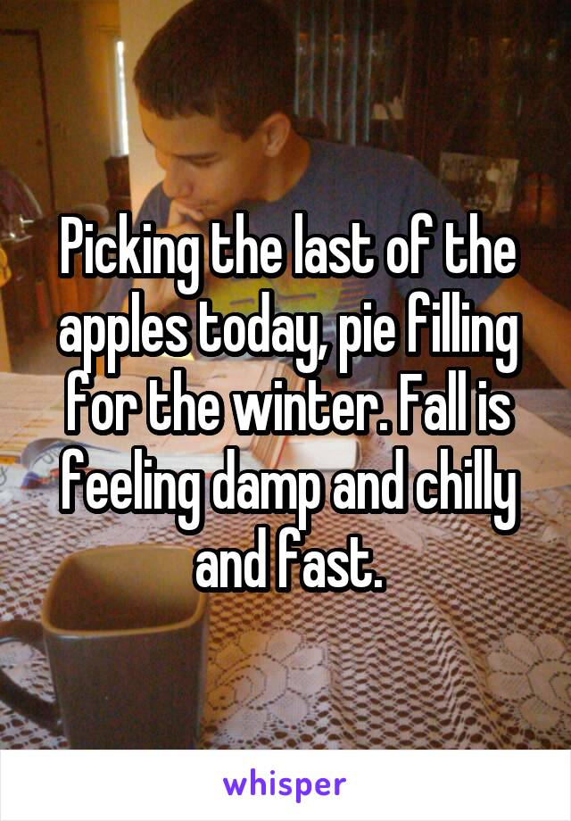 Picking the last of the apples today, pie filling for the winter. Fall is feeling damp and chilly and fast.