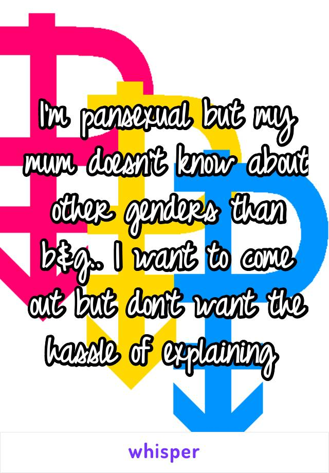 I'm pansexual but my mum doesn't know about other genders than b&g.. I want to come out but don't want the hassle of explaining