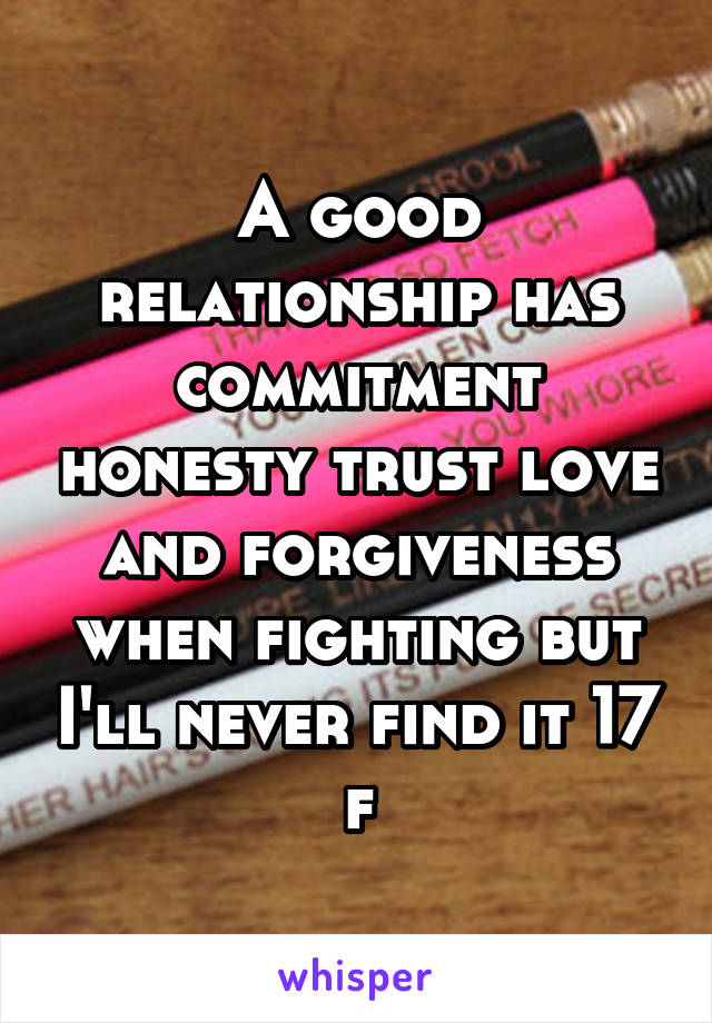 A good relationship has commitment honesty trust love and forgiveness when fighting but I'll never find it 17 f