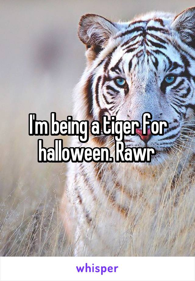 I'm being a tiger for halloween. Rawr