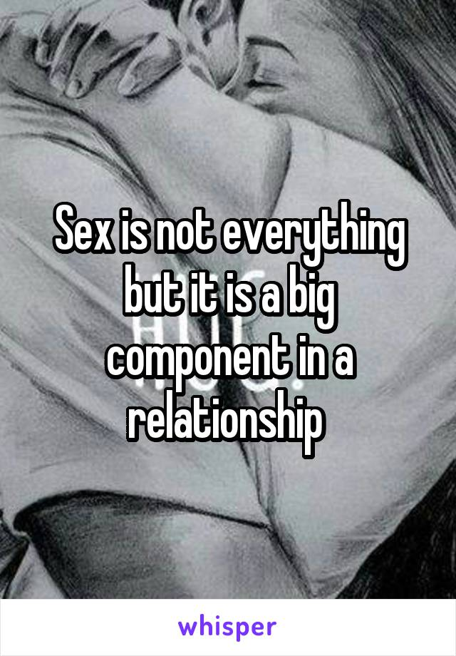 Sex is not everything but it is a big component in a relationship