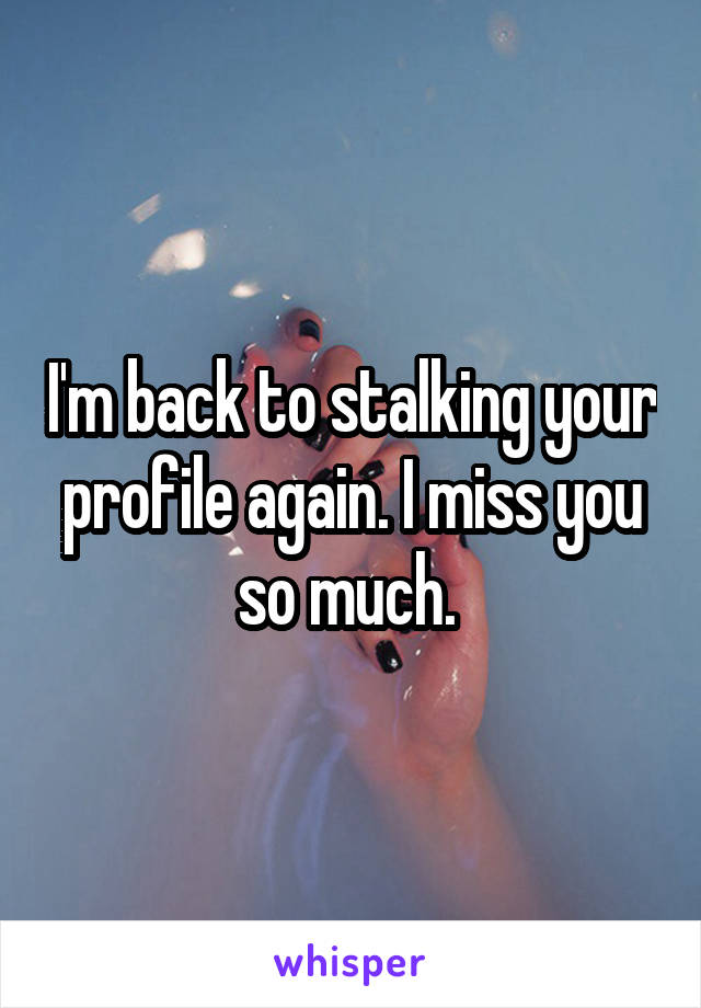 I'm back to stalking your profile again. I miss you so much.