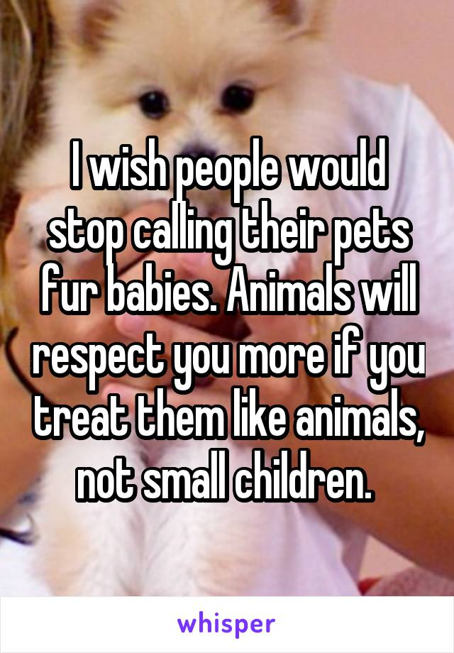 I wish people would stop calling their pets fur babies. Animals will respect you more if you treat them like animals, not small children.