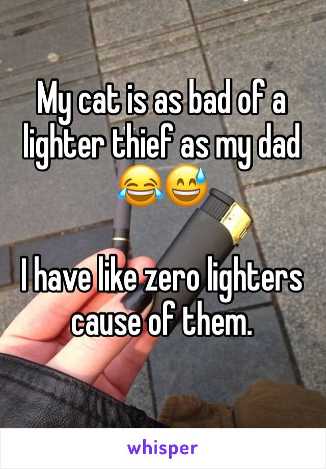 My cat is as bad of a lighter thief as my dad 😂😅   I have like zero lighters cause of them.