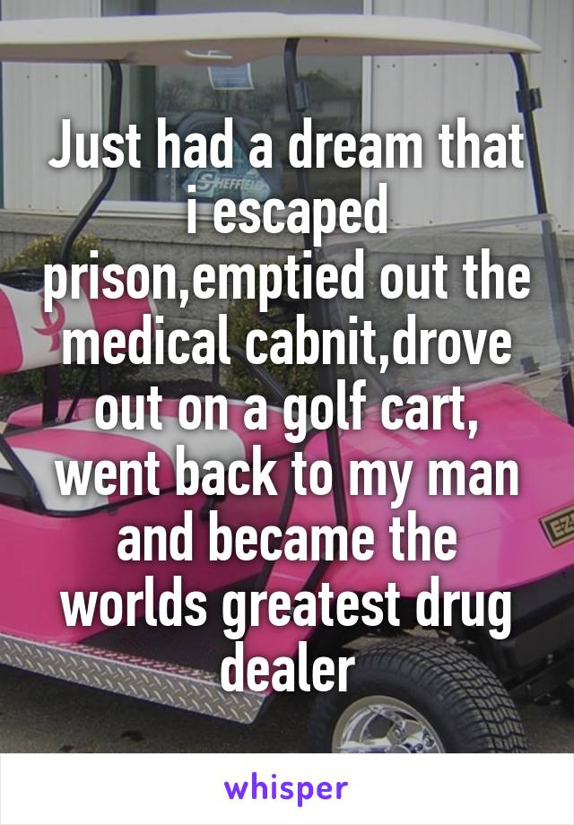 Just had a dream that i escaped prison,emptied out the medical cabnit,drove out on a golf cart, went back to my man and became the worlds greatest drug dealer