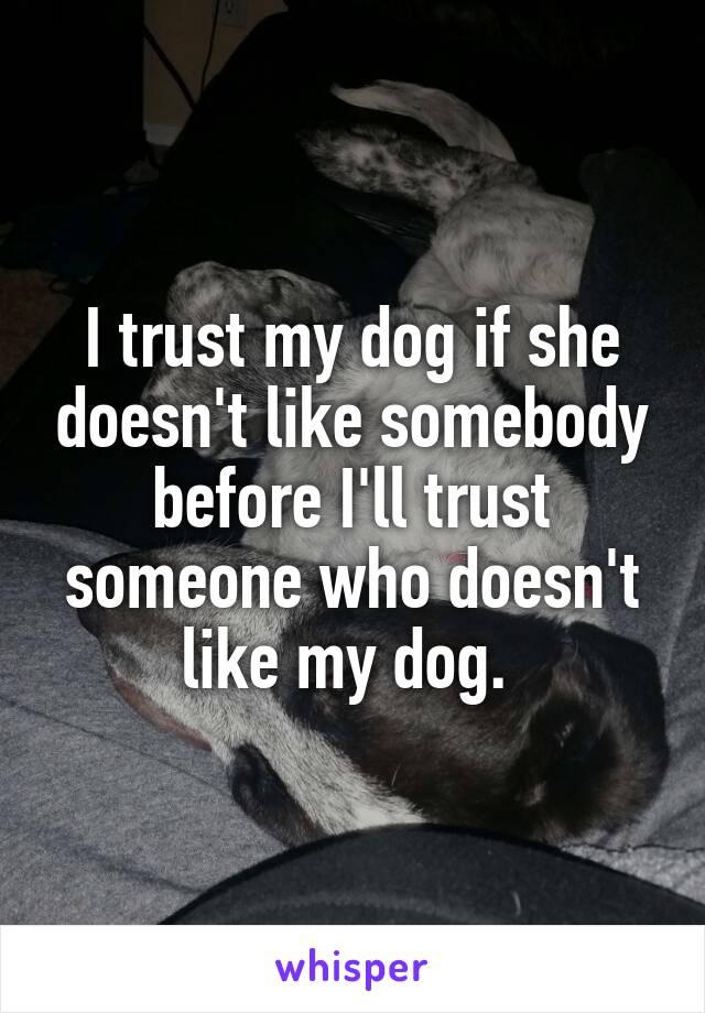 I trust my dog if she doesn't like somebody before I'll trust someone who doesn't like my dog.
