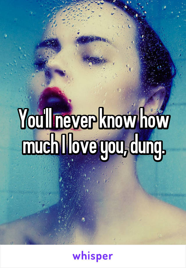 You'll never know how much I love you, dung.