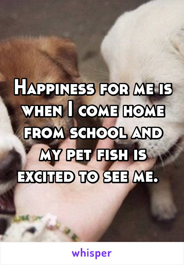 Happiness for me is when I come home from school and my pet fish is excited to see me.