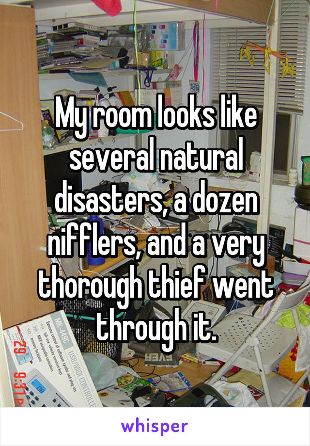 My room looks like several natural disasters, a dozen nifflers, and a very thorough thief went through it.
